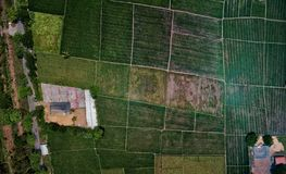 Aerial View of Fields stock photo