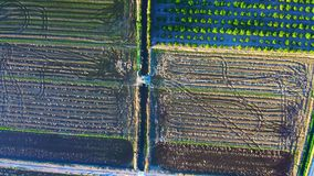 Aerial view of fields creating textures.  stock footage
