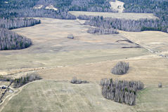 Aerial view of fields and forest. Stock Photo