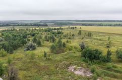 Aerial view on fields and forest on the top of roof Stock Photos