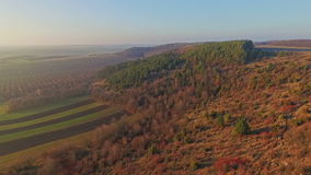 Aerial view of fields near the forest stock footage