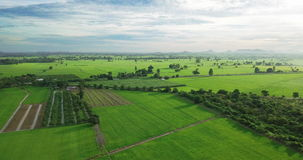 Aerial view of Fields with various types of agriculture in rural Thailand. SamChuk, SuphanBuri , Thailand stock footage