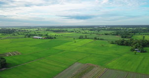 Aerial view of Fields with various types of agriculture in rural Thailand. SamChuk, SuphanBuri , Thailand stock video