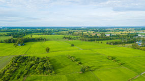 Aerial view of Fields with various types of agriculture in rural Royalty Free Stock Image