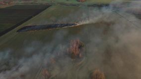 Aerial view on the fireman truck working on the field on fire. aerial view from drone farmer Burning dry grass at sunset stock video