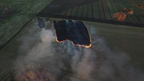 Aerial view on the fireman truck working on the field on fire. aerial view from drone farmer Burning dry grass at sunset stock video footage