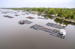 Aerial view fish cage Royalty Free Stock Images