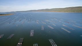 Aerial view ,fish coop, Fish cages ,Khonkean, Thailand. Aerial view fish coop Fish cages Khonkean Thailand Royalty Free Stock Photos