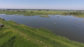 Aerial view of fish farm, cage fish farming, lake with fry. Natural pool stock footage