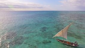 Aerial view of fishermen go out on sailboats to the ocean for fishing. Zanzibar. stock video