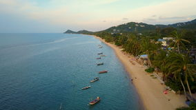 Aerial View of Fishing Boats Anchored by Seashore in Thailand stock video