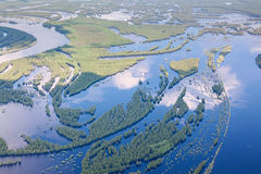 Aerial view flooded forest plains in summer. Royalty Free Stock Photos