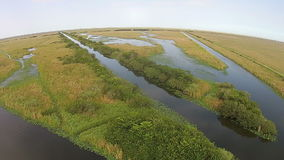 Aerial view of the Florida Everglades Stock Photography