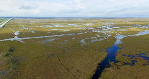 Aerial view of Florida Everglades swamp.  stock image