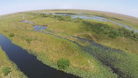 Aerial view of the Florida Everglades Royalty Free Stock Photo