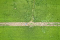 Aerial view from flying drone. Thai farmer spraying chemical to royalty free stock images