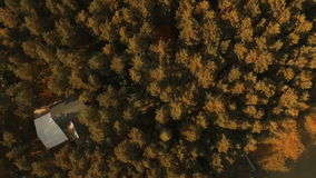 Aerial View. Flying over the beautiful forest trees. Fly camera shot stock video