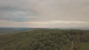 Aerial view flying over green tree tops of dense forest and over the mountains.  stock footage