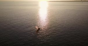 Fisherman boat on the sea. Aerial view footage of fisherman boat on the sea with sunset reflection, shot in 4k resolution stock video footage