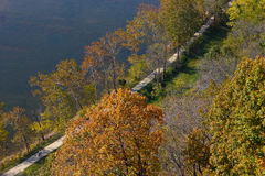 Aerial view on a footpath in the autumn forest. Stock Image