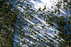 Aerial view forest Stock Image