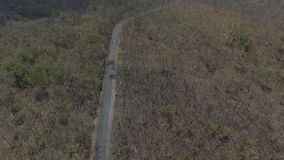 Aerial View Forest. Road Autum Sunset. toned image stock video footage