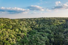 Aerial view of the forest and clouds. In the autumn Royalty Free Stock Photography
