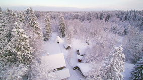Aerial view of the forest covered in snow. Seen are the houses and the trees in the forest in white snow stock video