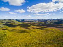 Aerial view of  forest in the far East, Russia royalty free stock images