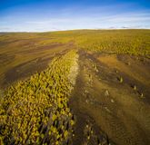 Aerial view of forest in the far East, Russia royalty free stock image