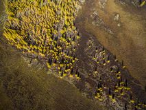Aerial view of forest in the far East, Russia stock photography