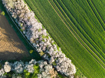 Aerial view of forest and fields. Royalty Free Stock Photo