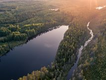 Aerial view of forest and little lake or pond stock image