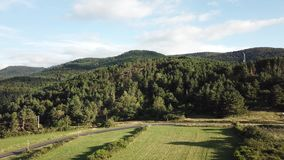 Aerial view of forest and meadow in pyrenean countryside, France stock video footage