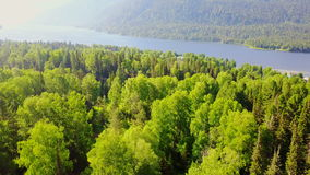 Aerial view of a forest and a mountain lake stock video footage