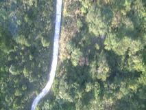 Aerial view of forest path stock video footage