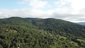 Aerial view of forest in Pyrenees, France stock footage
