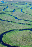 Aerial view forest river Stock Images