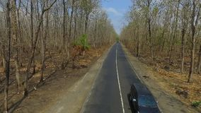 Aerial Forest Road. Aerial View Forest, Road Autum Sunset. toned image stock footage