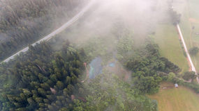 Aerial view of a forest. Road passing by Royalty Free Stock Photo