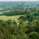 Aerial view of the forest - spruce trees from the top. Royalty Free Stock Photos