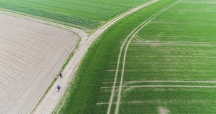 Aerial view fresh cultivated field stock video