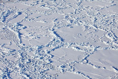 Aerial view of frozen Arctic Ocean Royalty Free Stock Photo