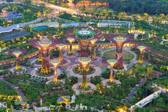Aerial view of Gardens by the Bay super trees Stock Photos