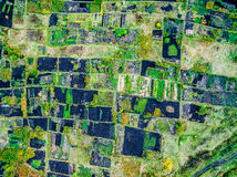 Aerial view of gardens Stock Photography
