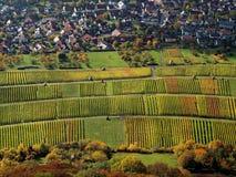 Aerial view German vineyards in Indian summer Royalty Free Stock Image