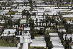 Aerial view of glasshouses in xochimilco mexico Royalty Free Stock Photo