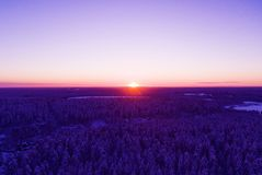 Aerial view of a gold sunset over winter snow-covered pine forest. Winter forest texture. Aerial view. Aerial drone view of a wint. Er landscape. Snow covered royalty free stock images