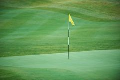 Aerial view of a golf course. Aerial view of a green golf course Royalty Free Stock Photos