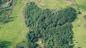 Aerial View of the Golf Course stock video